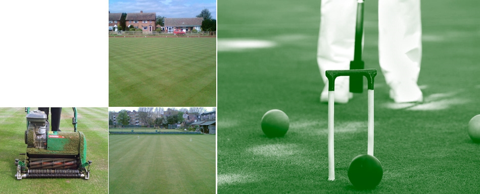 Croquet Lawn Maintenance